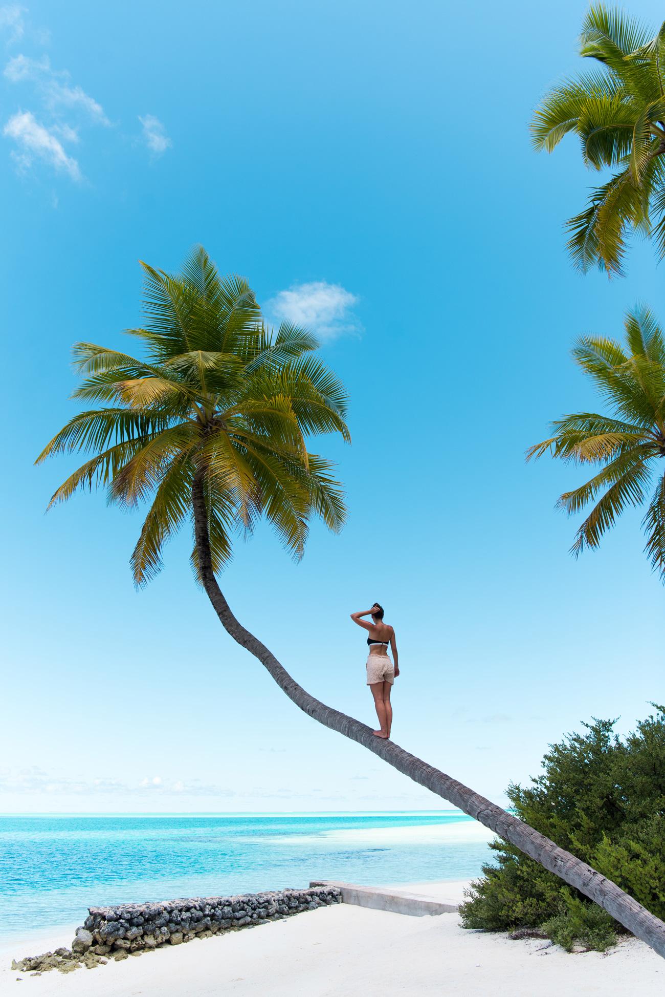 island urlaub tipps