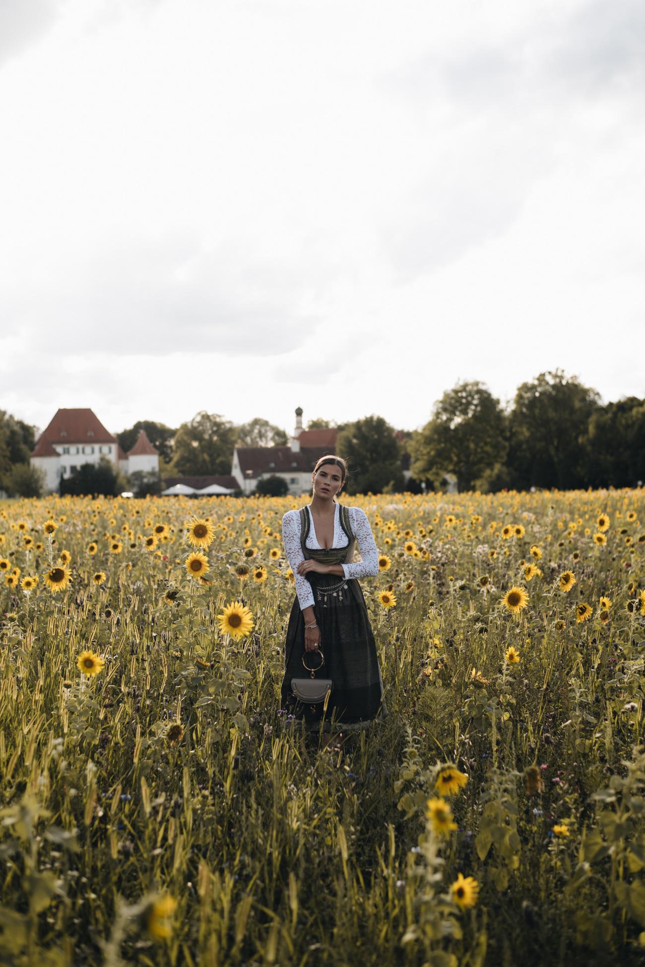 Sonnenblumen-feld-wiese-in-münchen-sommerzeit-nina-schwichtenberg-fashiioncarpet