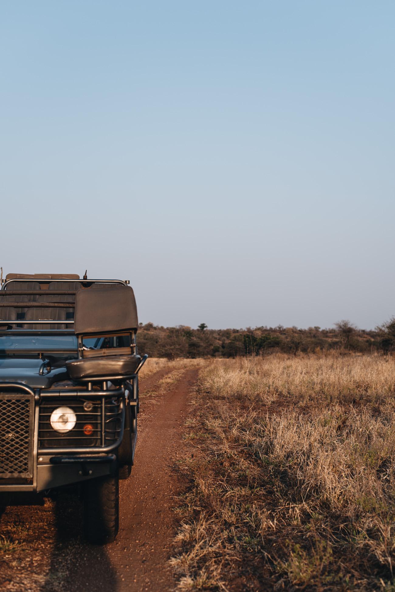 Singita-Safari-Krüger-Nationalpark-südafrika-erfahrung-reise-tipps-Big-5-tierwelt-giraffe-löwe-leopard-büffel-kudu-emparla-zebra-travel-blogger-nina-schwichtenberg-fashiioncarpet