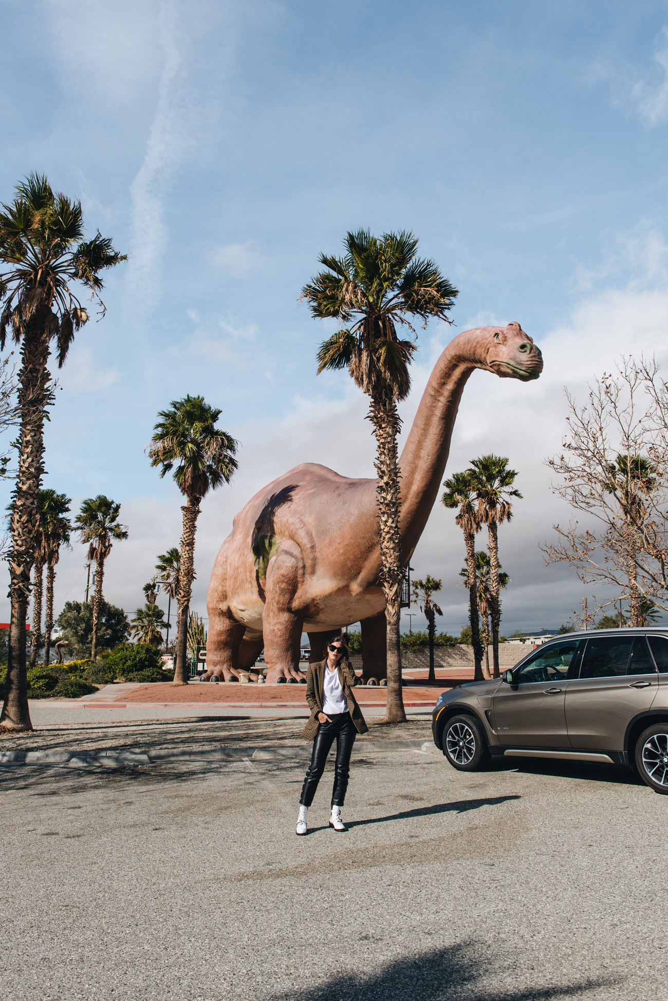 Kalifornien-Road-Trip-Usa-Palm-Springs-Las-Vegas-Joshua-Tree-Park-Grand-Canyon-Monument-Valley-Los-Angeles-nina-schwichtenberg-fashiioncarpet