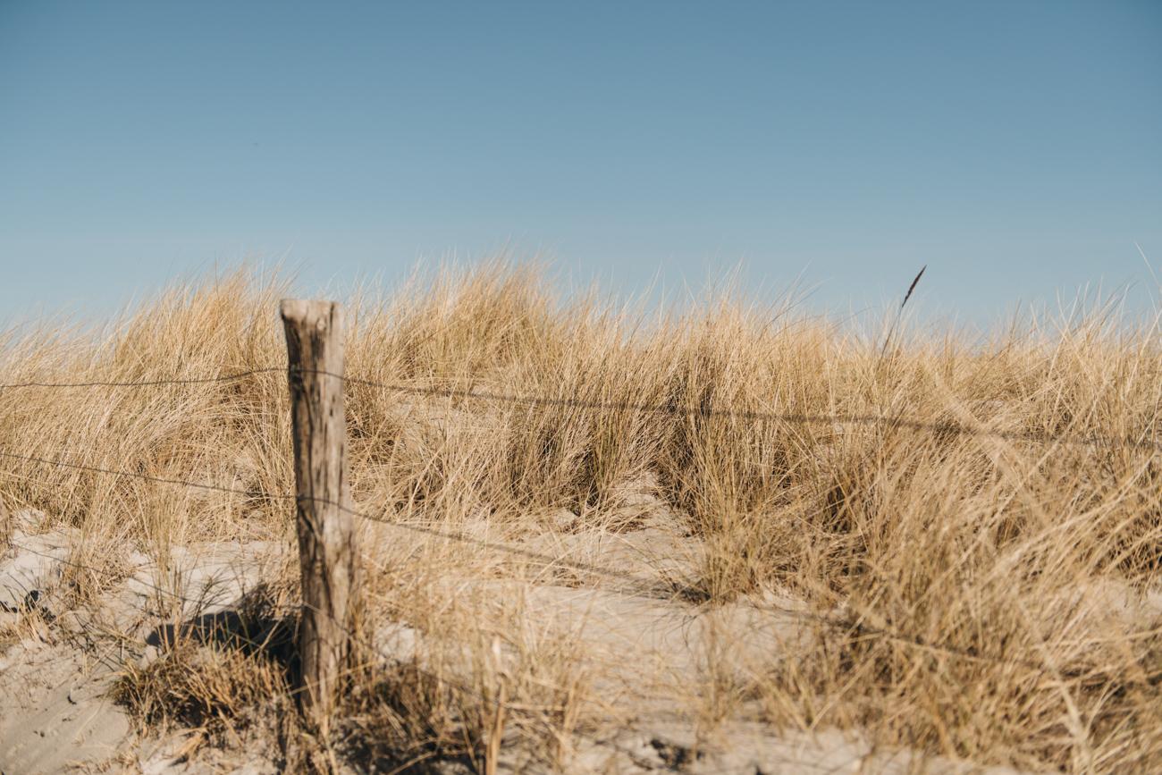 Dünen in Heiligenhafen