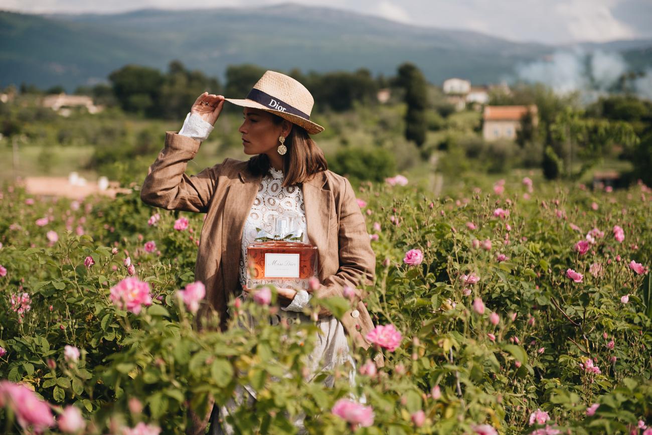 Dior Rosenfelder Frankreich