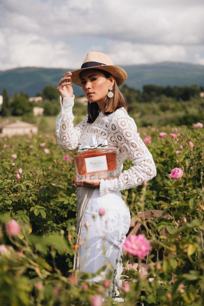 Dior Rosenfelder In Grasse  Missdiorforlove