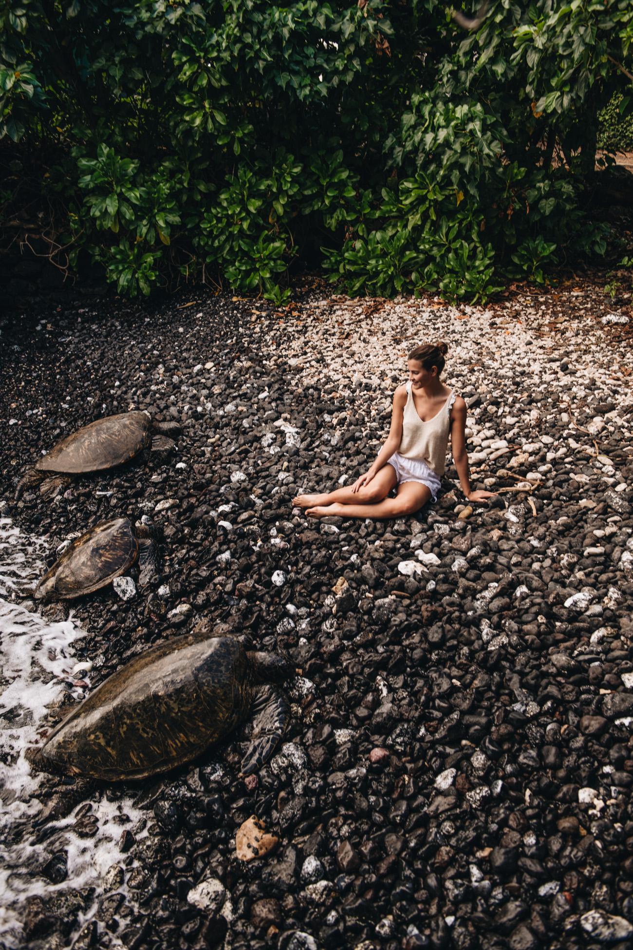 Reisebericht Hawaii Maui Turtle Town