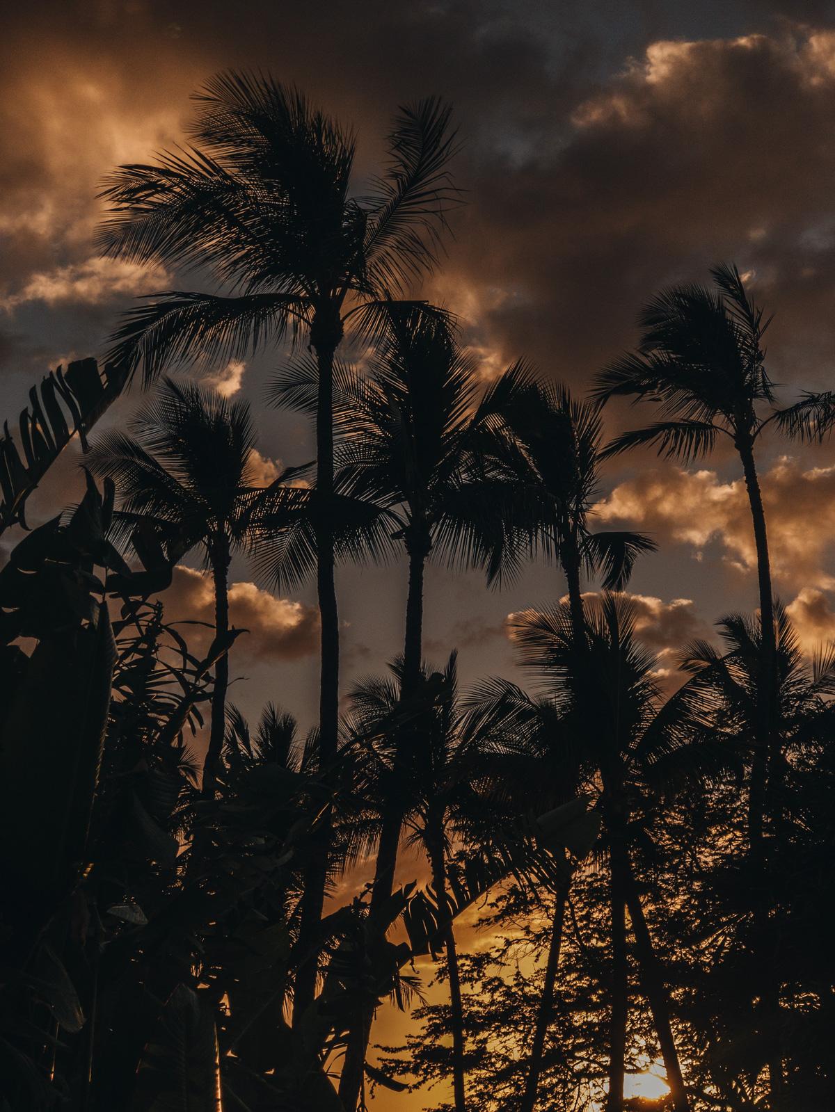 besten reisezeiten Hawaii
