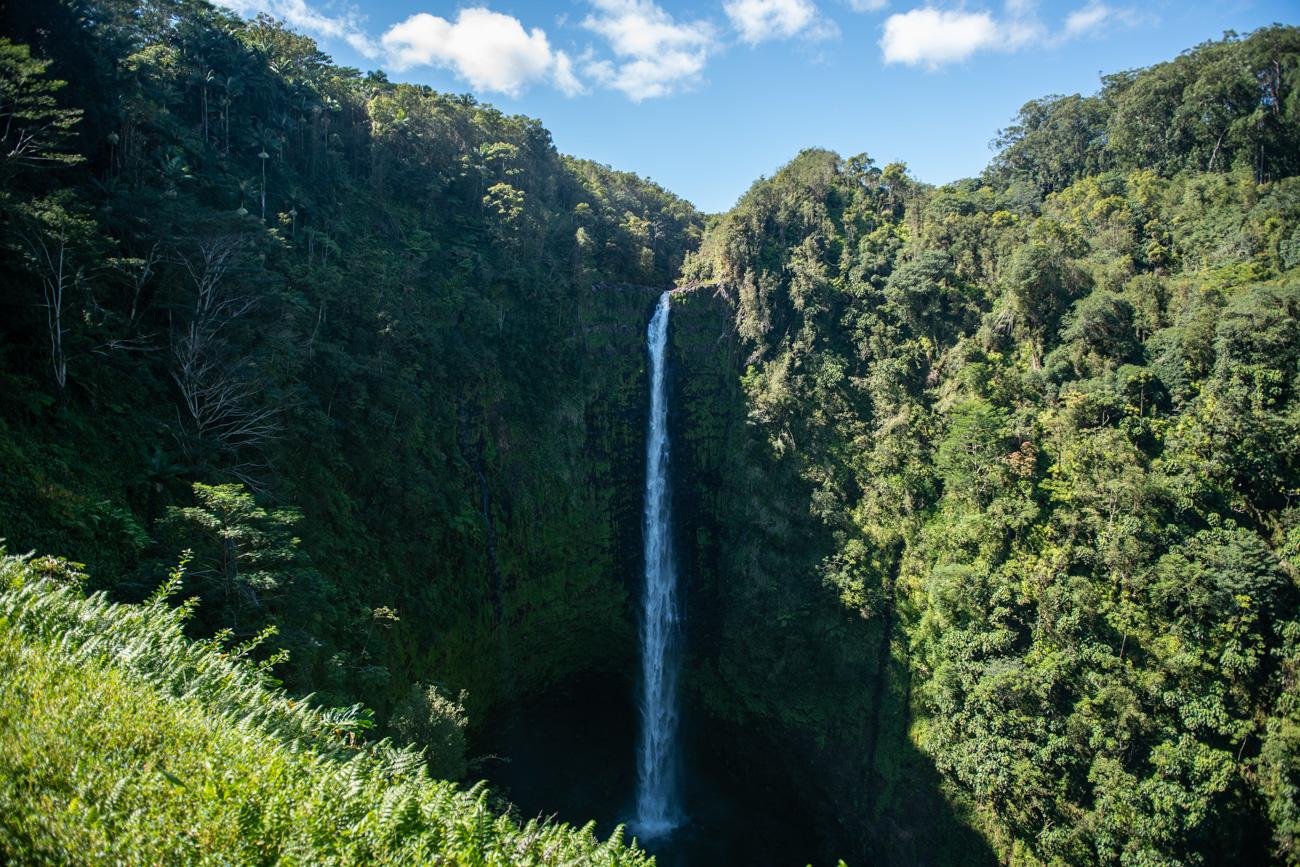 Big island Akaka Falls State Park
