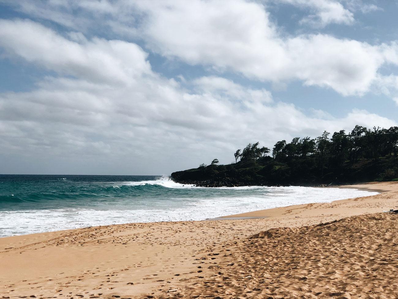 Hawaii Kauai Hanalai Beach Donkey Strand
