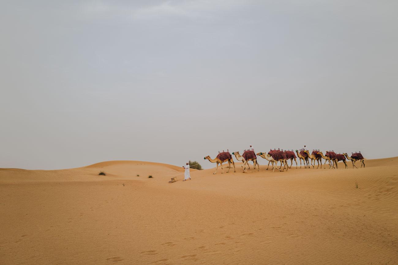 Dubai Wüsten Tour Platinum Heritage