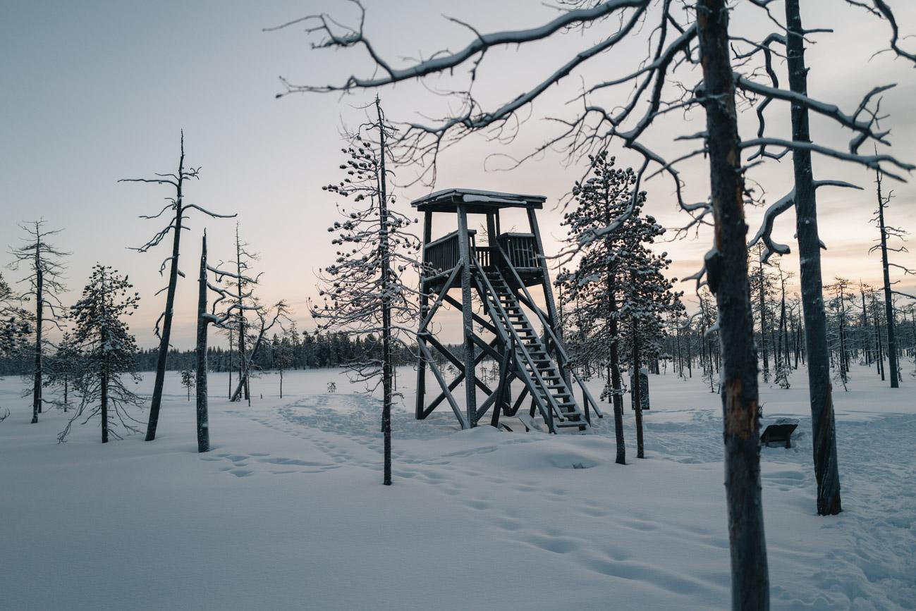 Reiszeiten Lappland Tipps